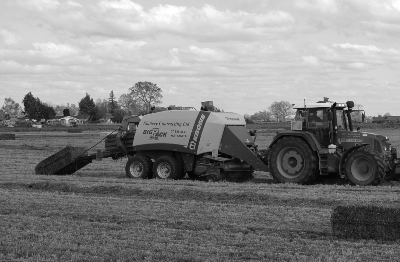 Krukerink silage 27 Sept 13 Krone Sq (225Cropped EC BW)-216